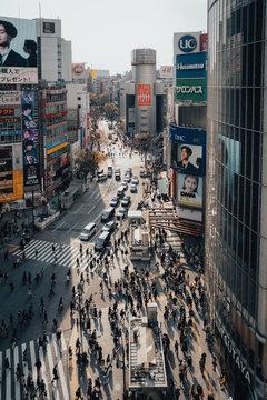 Tokyo Japan Shibuya Crossing Crosswalk