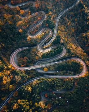 Aerial of Japanese Road Autumn