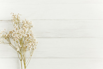 Baby's breath flowers on white wood background with copy space
