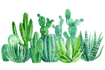 watercolor cacti on a white background, decorative drawings, abstract plants