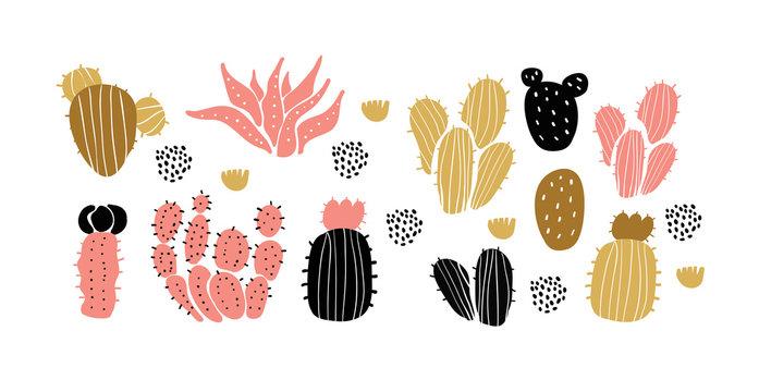 Vector set of cactuses, succulents, scandinavian