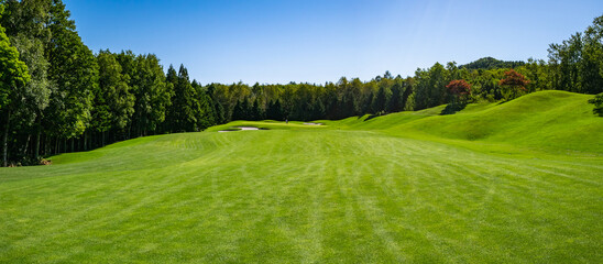Golf Course with beautiful green field. Golf course with a rich green turf beautiful scenery.