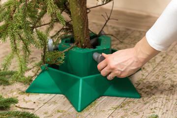 Fototapeta 10. Kobiece dłonie odkręcają podstawę pod choinkę Bożonarodzeniową. Sprzątanie i usuwanie drzewka po Świętach. obraz