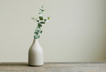 Obraz Eucalyptus branch in a vase on the table with copy space - fototapety do salonu