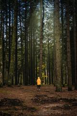 Woman with yellow jacket walking in the dark forest of Mount Limbara, Olbia-Tempio - Sardinia.
