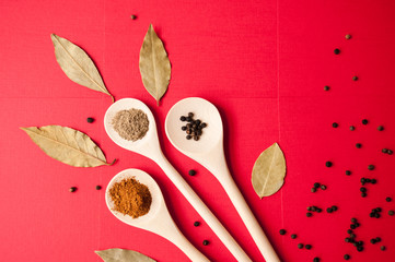 Spices: black pepper, ground red pepper and ground coriander on wooden spoons and Bay leaf on red background