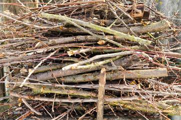 Stores à enrouleur Texture de bois de chauffage branch of woods