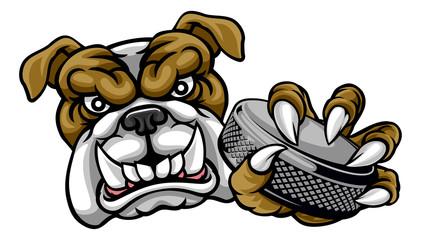 A bulldog ice hockey player animal sports mascot holding a hockey puck