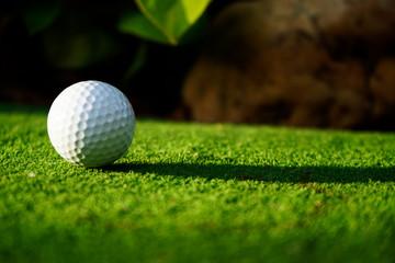 Golf ball on green grass in beautiful golf course