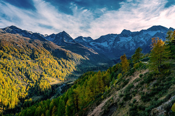 Panoramic view of the Passeier valley with the Seeberalm (Malga del Lago)  with the high rising alp mountains of the Texelgroup (Gruppo di Tessa)
