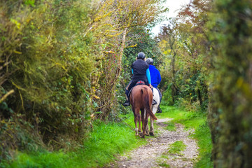 two horse riders walking in the forest in autumn