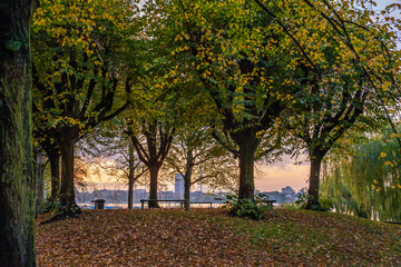 Hamburg, Germany. Park at the Lake Alster in the autumn.