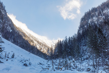 valley großarl in austria in winter with snow covered trees