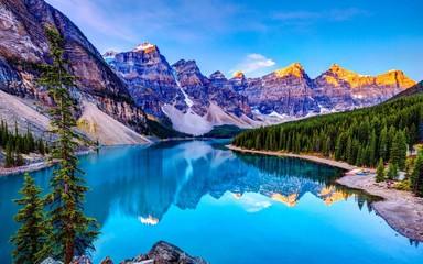 Beauty nature