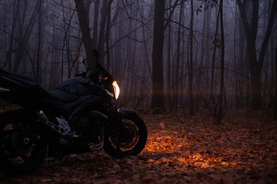 Heavy fog in the autumn forest and black motorcycle