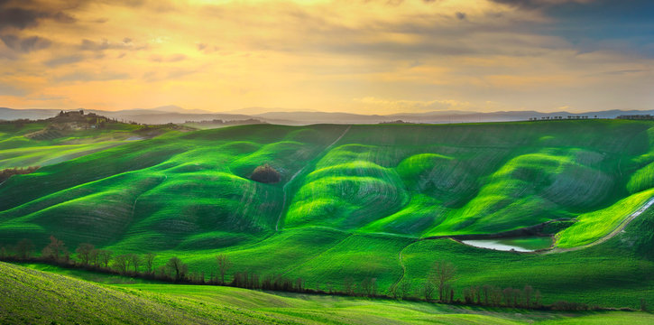 Tuscany panorama, rolling hills, trees and green fields. Italy
