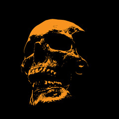 Scull portrait silhouette in contrast backlight. Vector. Illustration.