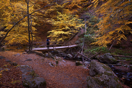 Beautiful autumn landscape. River with wooden bridge. Landscape from the Rhodopi Mountains, a mountain trail to Fotinovo waterfalls Bulgaria.