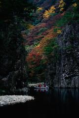 三段峡 紅葉 船
