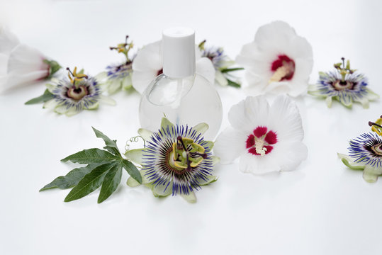 Composition of cosmetic products on white background and exotic white flowers.