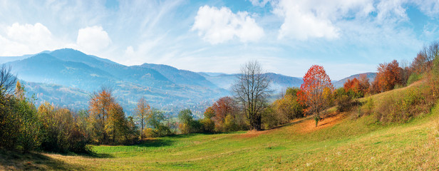 beautiful autumn morning in mountains. misty atmosphere with clouds on the sky. trees on the hillside in colorful foliage. weathered grass on the slopes. haze above the distant valley. wide panorama