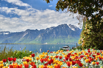 Los alpes desde Montreux Wall mural