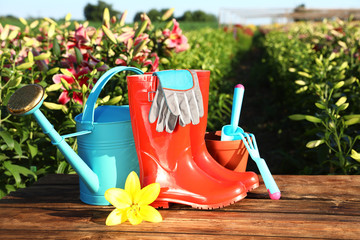 Printed kitchen splashbacks Garden Gardening tools, rubber boots and fresh lily on wooden table in flower field