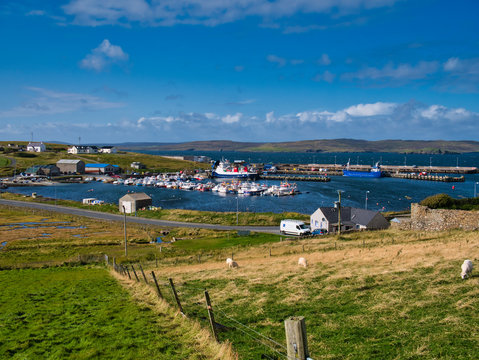 A view of Symbister harbour on the island of Whalsay in Shetland, Scotland, UK on a calm sunny day. The car ferry and recreational boats appear, with Dury Voe in the background.