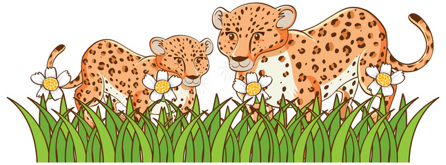 Isolated picture of cheetahs in garden
