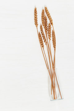 Top view of golden painted ears of wheat in glass transparent vase on light concrete background. View from above.