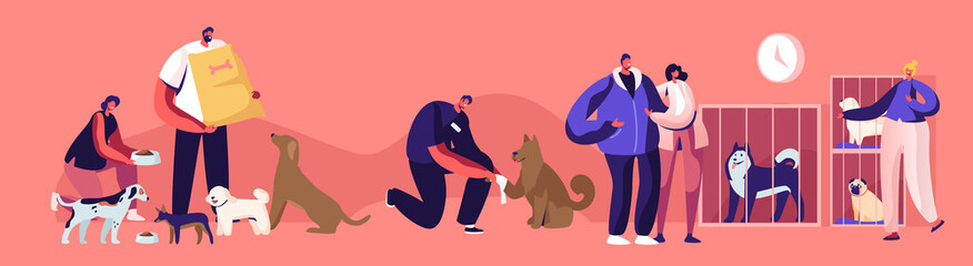 Fototapeta Kind People Help Homeless Animals. Men and Women Adopting Pet from Shelter, Healing and Feeding Dogs. Pound, Rehabilitation or Adoption Center for Stray Pets Concept. Cartoon Flat Vector Illustration obraz