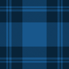 Beautiful classic blue plaid pattern vector