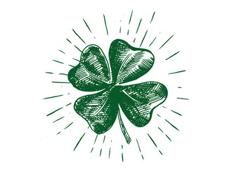 Patrick day. Clover, hand drawn illustration.