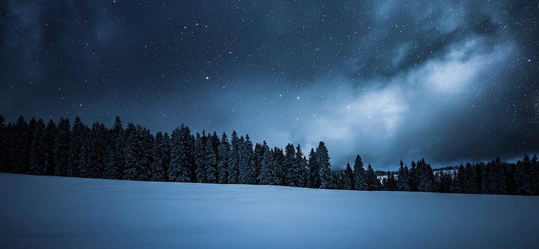 Verschneiter Tannenbäume im Winter an Weihanchten