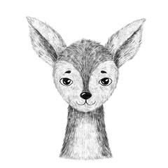 Baby deer. Hand drawn animal. Isolated