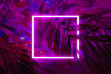 Background made of palm leaves with neon light square.