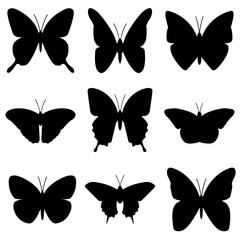 Butterfly icon, logo isolated on white background