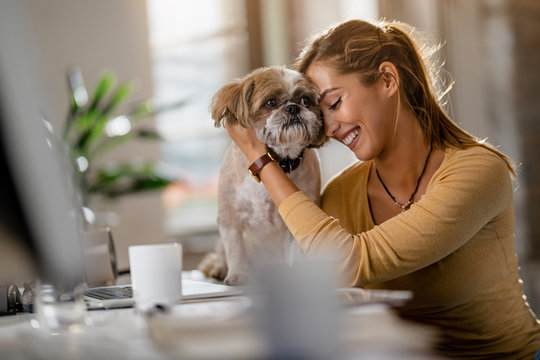 Young happy woman cuddling her dog in the office.