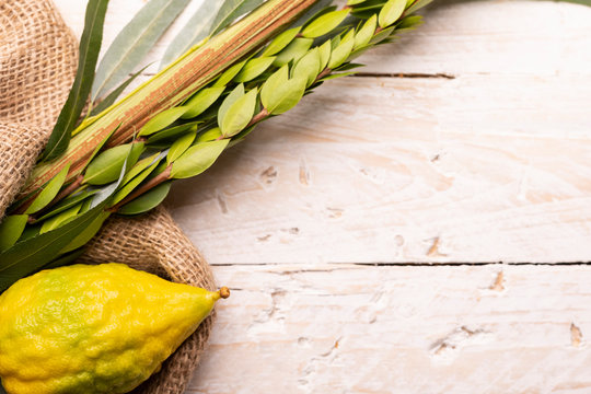 Composition of Sukkot symbols: palm, willow, myrtle, etrog. Lulav on jute fabric and wood background with a copy space.