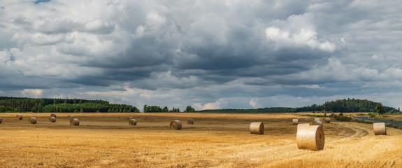 Aluminium Prints Dark grey A typical natural landscape: yellow fields and dry haystacks. Panoramic view. Daytime countryside landscape under cloudy sky in Bohemia, Czech Republic, Europe