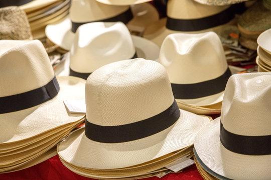 assortment of genuine hand-made panama hat on a shelf