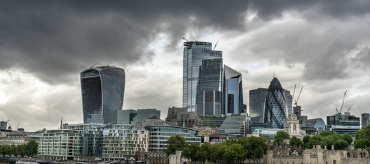 London skyline at cloudy day including skyscrapers at financial district. Picture took along the riverside and blurry bird on the foreground Wall mural