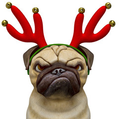 dog pug cartoon with a christmas hat doing a angry face