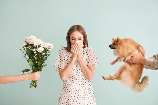 People giving flowers and dog to young woman suffering from allergy on light background
