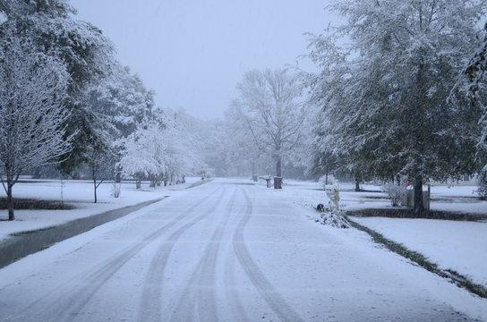 Winter in Southern Louisiana: Rarely-Seen Snow-Covered Neighborhood Street