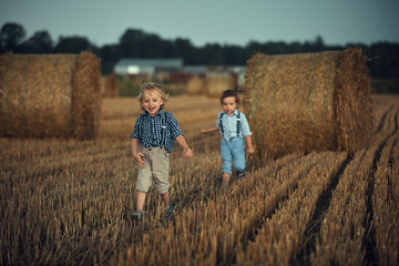 Poster Artist KB Two adorable brothers having fun in the countryside