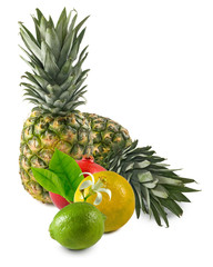 Fototapete - Image of  tropical fruits isolated on white background