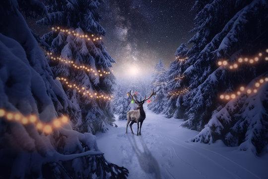 Ein Hirsch mit Weihnachtsdekoration steht im Winterwald