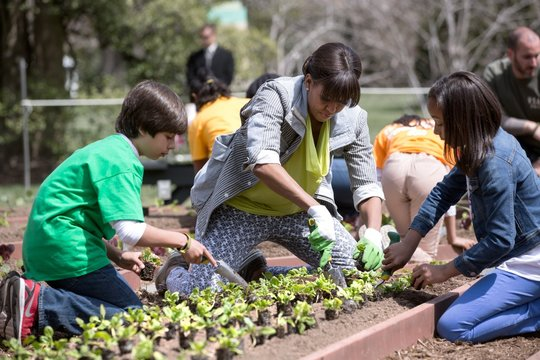 White House Kitchen Garden spring planting with Michelle Obama and School children