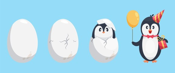 Penguin egg. Birth stages of penguin. Cute cartoon animal newborn vector illustration. Broken egg bird, nature polar and adorable newborn